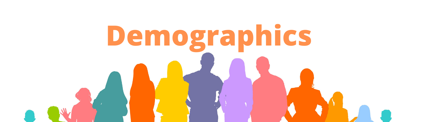 Demographics banner with image of people